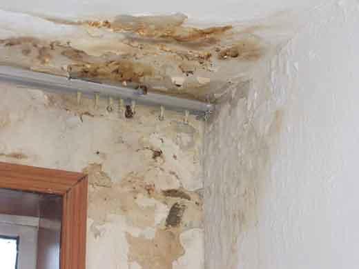 专业楼面、卫生间、阳台防水补漏_专业楼面、