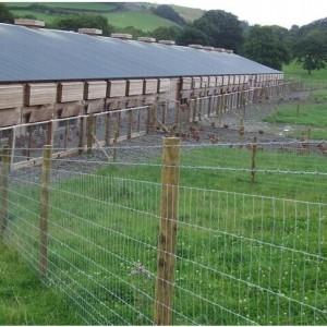 银川哪里有养殖围栏用网 银川围栏网现货供应 宁夏养殖围栏网