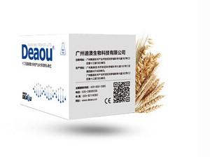 食品实验分析设备仪器外贸-转基因水稻品系Bt63核酸检测试剂