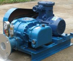 供应水产养殖专用三叶罗茨风机沼气增压罗茨风机