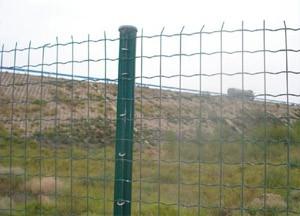 广西省供应优质养殖铁丝网护栏网生产厂家