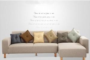 【南陵芜湖家具厂】真皮沙发与布家具柘木买卖图片