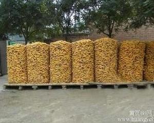安平县玉米圈 养殖 专用铁丝网