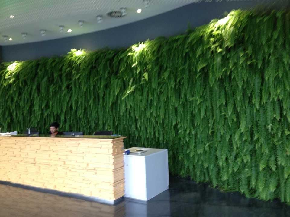 上海手绘墙公司_上海植物墙公司_上海植物墙公司
