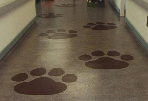 济宁健身房橡胶地板 橡胶地垫 幼儿园专用地垫