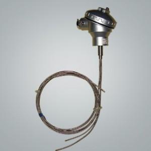 WZ系列卫生型温度传感器 牛奶厂、酿酒厂、饮料厂专用迪川牌温
