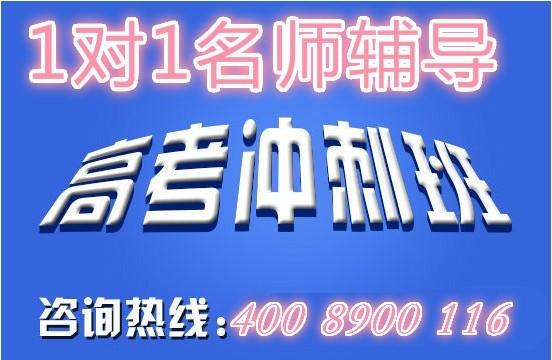 北京艺考培训学校【学大教育艺考冲刺班】报名