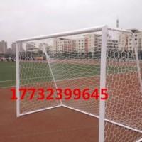 沧州中小学五人制足球门标准报价比赛比赛足球
