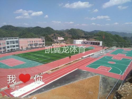 贵州人造草坪厂家 EPDN塑胶跑道施工 复合型塑胶跑道价格