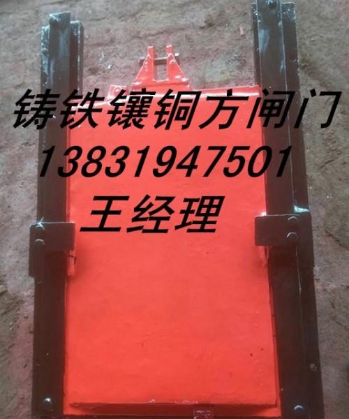 PGZ平面拱形铸铁闸门现货加工定制