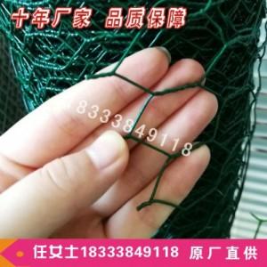 小六角铁丝网 鸡鸭鹅养殖围网 鸡笼拧花网