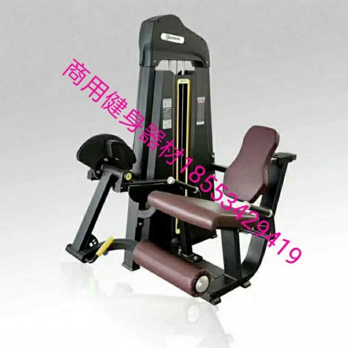 山东德州健身房商用健身器材力量器械大黄蜂坐