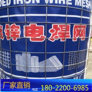不锈钢电焊网铁网 不锈钢防护网钢网围栏广东养殖网鸡笼40目丝