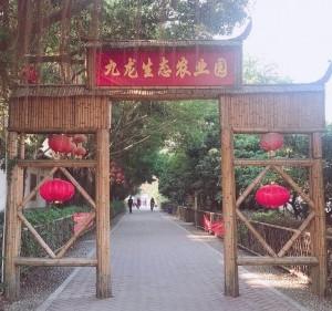 深圳一日游亲子游就选深圳九龙山生态园野炊烧烤休闲