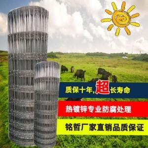 热镀锌牛栏网草原网牧场养殖护栏网动物围栏牛羊散养围网安平厂家
