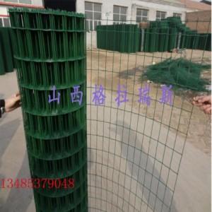 晋城地区直销鸡鸭养殖网 绿色铁丝网 圈地养殖网