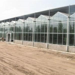 宁波生态旅游观光玻璃温室大棚多项技术指标达国际水平