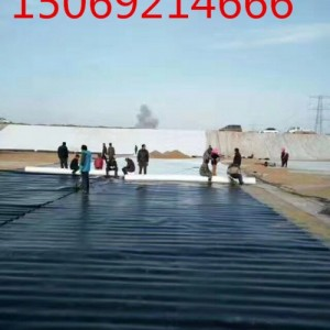 石油化工hdpe土工膜 污水防渗处理防渗土工膜