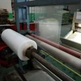 实力厂家直销PP塑料片磨砂透明环保PP片材高透明流延PP卷材