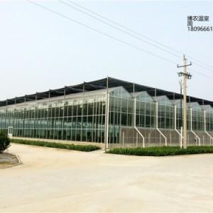合肥玻璃温室大棚蔬菜花卉种植厂家供应