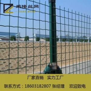 河北鹏隆丝网 养殖荷兰网 绿色荷兰网 铁丝网围栏
