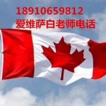 上海面试美国H1B后审核今天issued多久收到