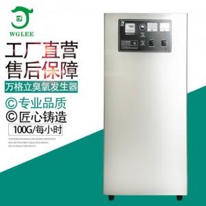 养殖场井水过滤饮水杀菌用100G臭氧发生器空气消毒机净化设备