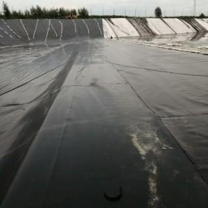 养殖专用膜 高密度聚乙烯土工膜厂家直销 尺寸颜色定制