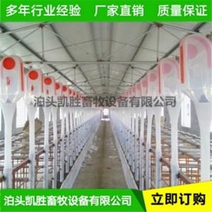 凯胜畜牧 自动化养殖料线 猪舍喂料线 厂家批发价