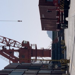 上海内贸海运公司发木材 海运发货海运到门发石材