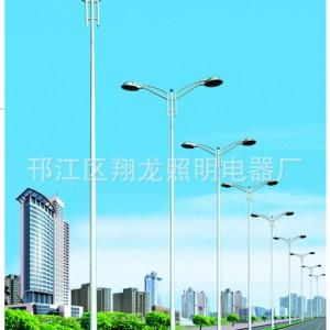 厂家供应户外照明灯具翔龙道路照明灯具生产厂家