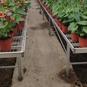 深州华耀温室大棚花卉种植SZ-56喷灌机