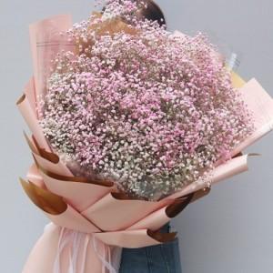 云南国色忝香花卉有限公司流星花园自己轻松当老板