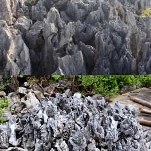 广东佛山英石厂家供应 园林石材假山石厂家供应