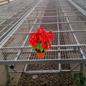 广西航迪001花卉移动苗床