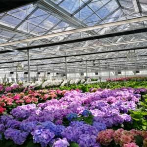 育苗温室大棚设计 花卉温室工程 种植温室建造 三润泰克