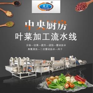 贵州蔬菜配送中心净菜加工流水线设备时产2吨连续式蔬菜清洗机