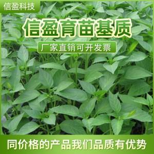 厂家直供***肥料菌种***肥料可用于园林绿化园艺花卉蔬菜瓜果