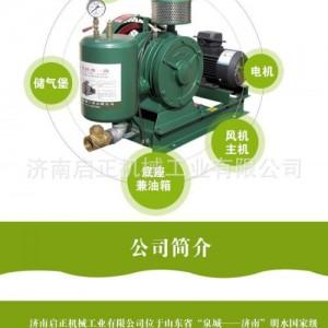 浙江HCC601S畜禽养殖废水处理回转式鼓风机