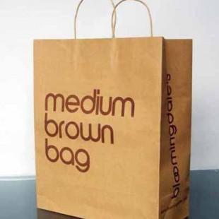 大连市纸袋环保纸袋手提纸袋纸袋加工礼品纸袋防油纸袋购物纸袋印刷图片