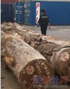 广州原木进口关税