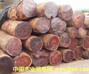深圳广州缅甸花梨进口报关公司