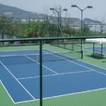 网球场围网低价批发_口碑好的网