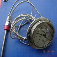 WTZ,WTQ系列轴向全不锈钢压力式温度计