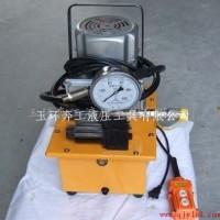 ZCB-700B超高压电动泵浦