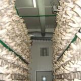 深圳食用菌种植专用加湿机