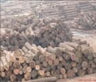 东莞非洲进口木材报关清关代理