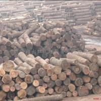 非洲进口木材报关清关进口木材清关代理