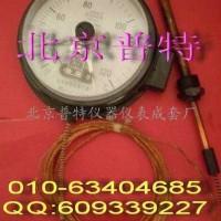 WTZ(Q)288压力式电接点温度计