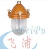 温州供应SFD56-系列防水防尘防腐灯
